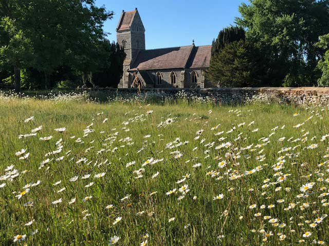Church From Wildflower Meadow